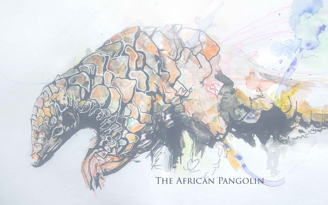 The Magical Pangolin – a rare ancient treasure